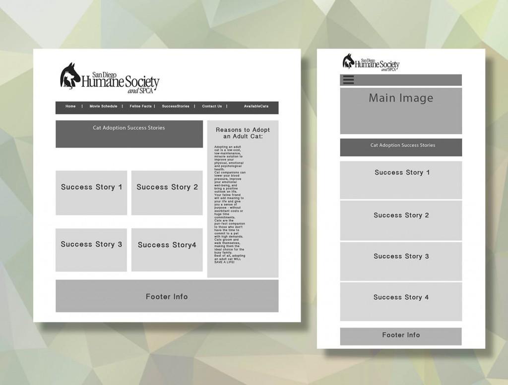 SDHSSuccessStoriesWireframes