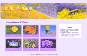 Finished CA wildflowers web page for Intro to HTML/CSS